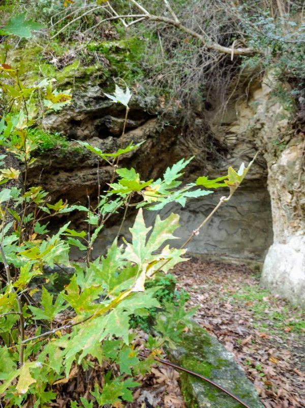 σπήλαιο γαβαλάς