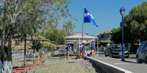 Στις φιλόξενες παραλίες της Μεσαράς και φέτος οι χελώνες caretta caretta